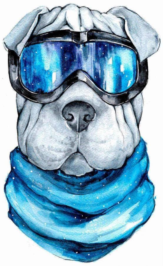 Κατασκευή Ψηφιδωτού kit Σκύλος με γυαλιά 20cm X 30cm
